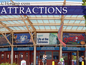 Car Rentals In New London Ct Fairfield CT Attractions Connecticut Attractions Fairfield County CT ...