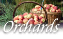 CT Apple GRowers
